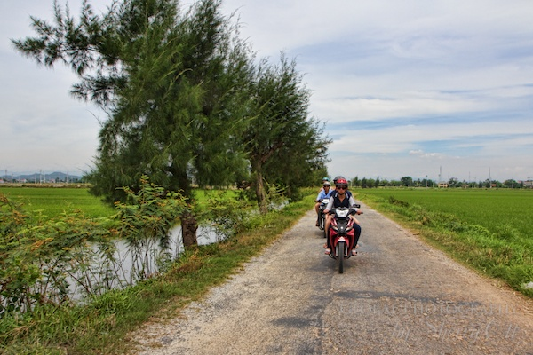 Motorbiking through the rice fields outside of Hue